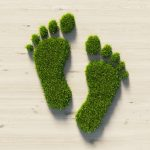 Conceptual image of a footprint made of green grass on wood background.