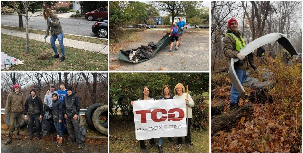 Collage showing different activities TCGers have done to clean up DC area parks.
